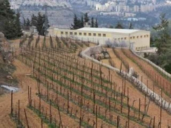 "The Cremisan Wall: ""The last nail in Bethlehem's coffin"""